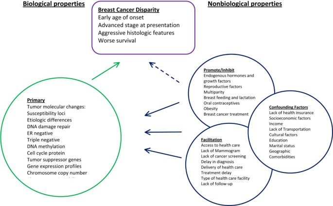 Disparities in breast cancer outcomes between Caucasian and