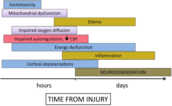 Clinical review: Neuromonitoring - an update | Critical Care | Full Text