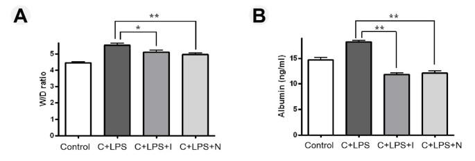 Effect of tyrosine kinase inhibitors, imatinib and nilotinib