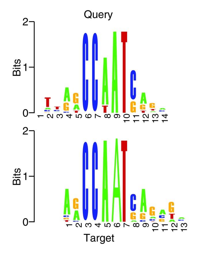 Quantifying similarity between motifs   Genome Biology   Full Text