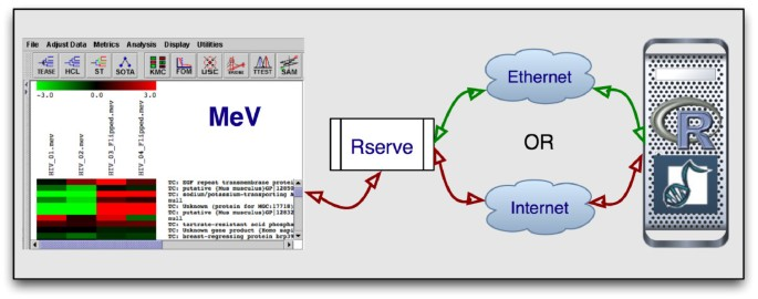 MeV+R: using MeV as a graphical user interface for