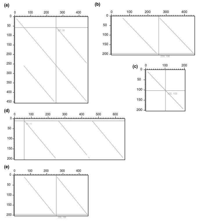 Comparative genomic analysis of C4 photosynthetic pathway