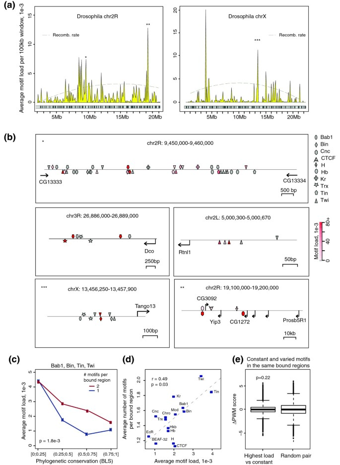 Analysis of variation at transcription factor binding sites