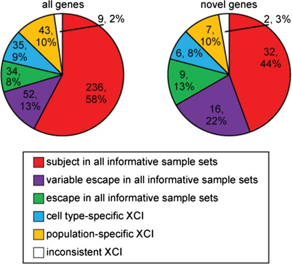 Analysis of expressed SNPs identifies variable extents of