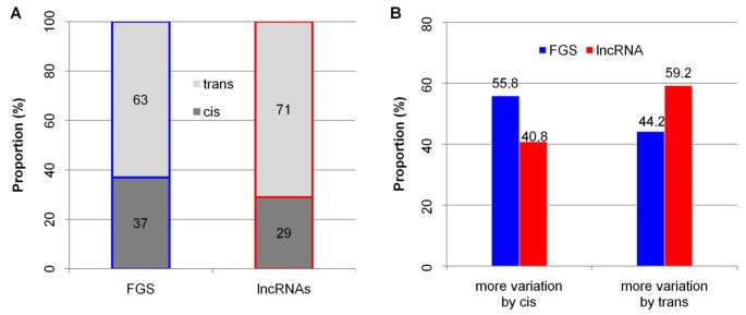 Genome-wide discovery and characterization of maize long non