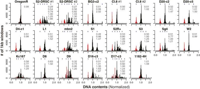DNA copy number evolution in Drosophila cell lines | Genome