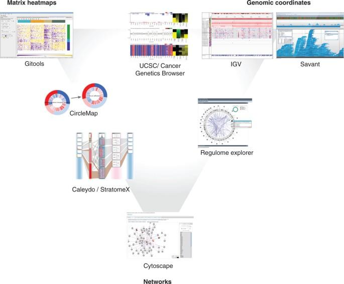 Visualizing multidimensional cancer genomics data | Genome
