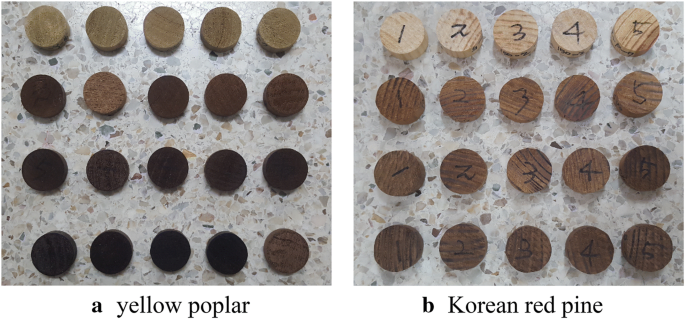 Changes in gas permeability and pore structure of wood under