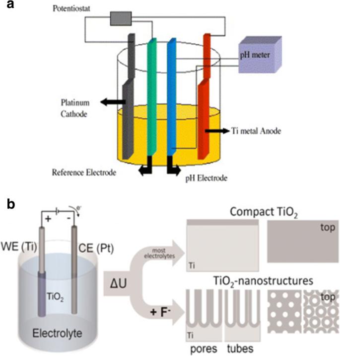 A Review on the Electrochemically Self-organized Titania Nanotube