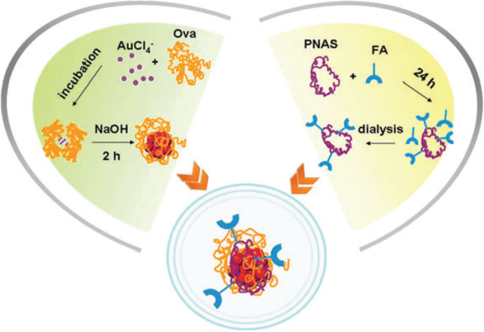 Biomedical Applications for Gold Nanoclusters: Recent