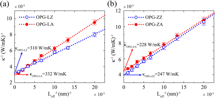 Thermal Conductivity of Two Types of 2D Carbon Allotropes: a
