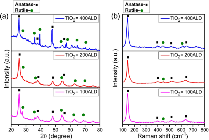 TiO 2 Nanomembranes Fabricated by Atomic Layer Deposition for