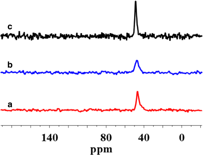 A 29 Si 1 H And 13 C Solid State Nmr Study On The Surface