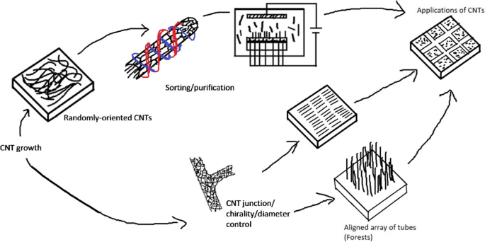 Carbon Nanotube Assembly and Integration for Applications