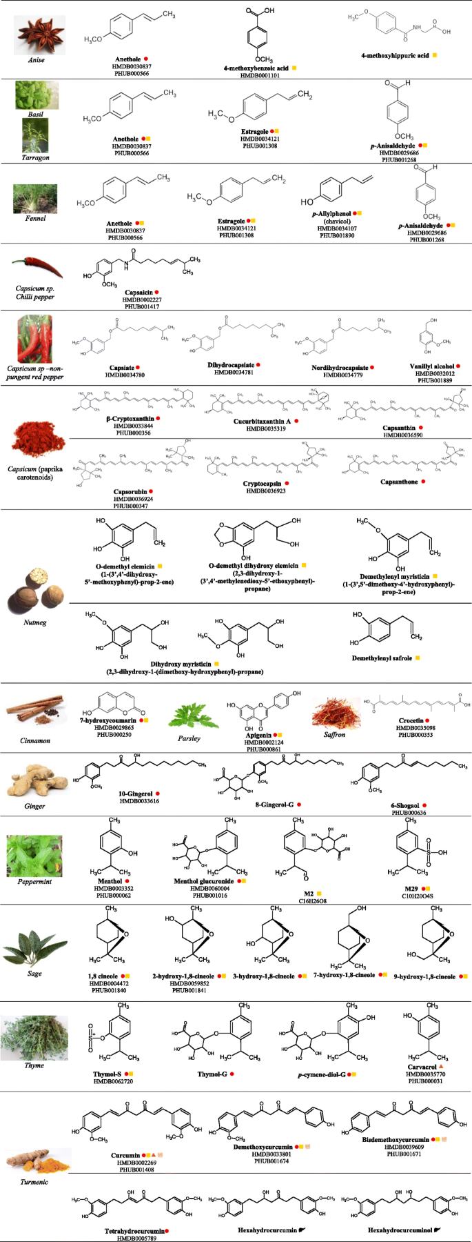 Herbs and Spices- Biomarkers of Intake Based on Human