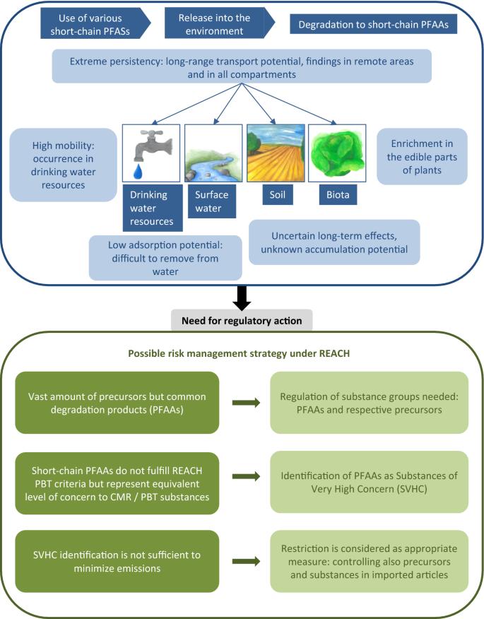 Short-chain perfluoroalkyl acids: environmental concerns and a