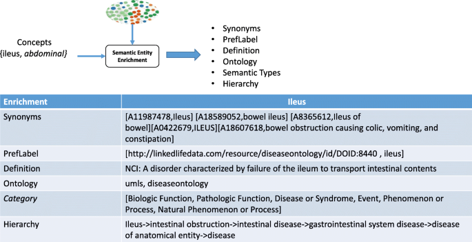 Linked open data-based framework for automatic biomedical
