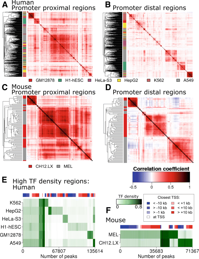 Insights into mammalian transcription control by systematic