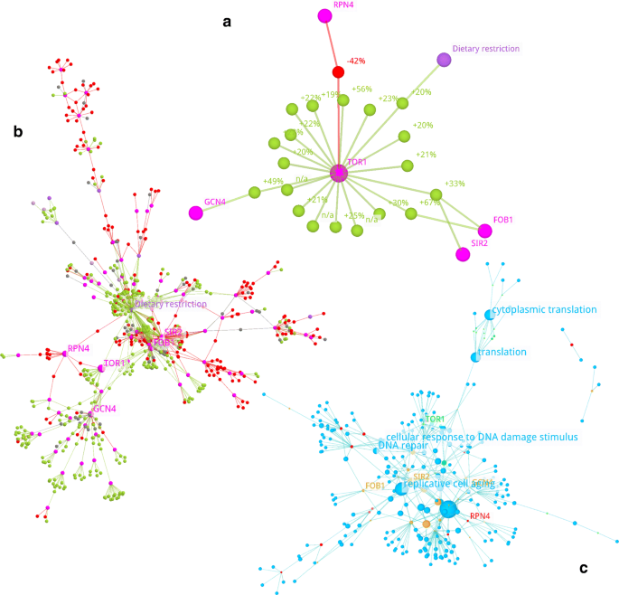 3D Network exploration and visualisation for lifespan data