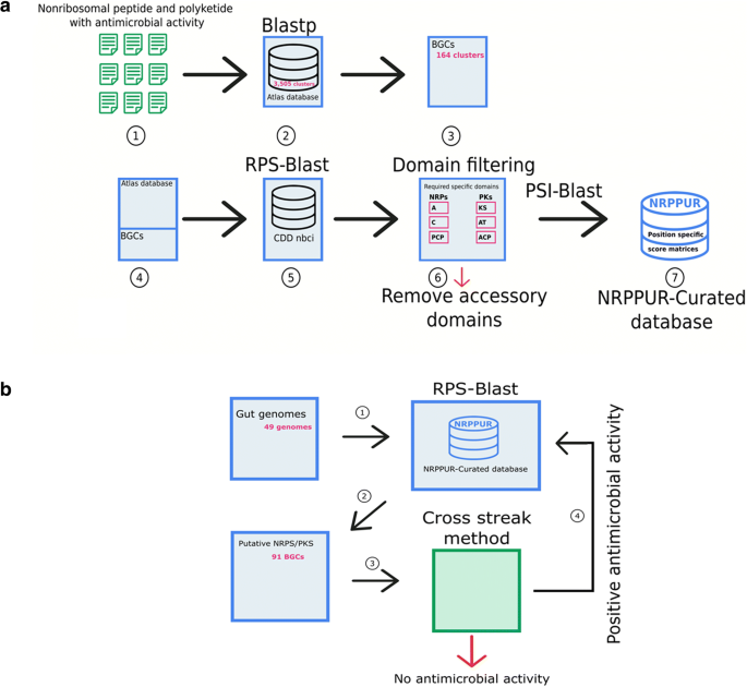 Full-length title: NRPPUR database search and in vitro analysis