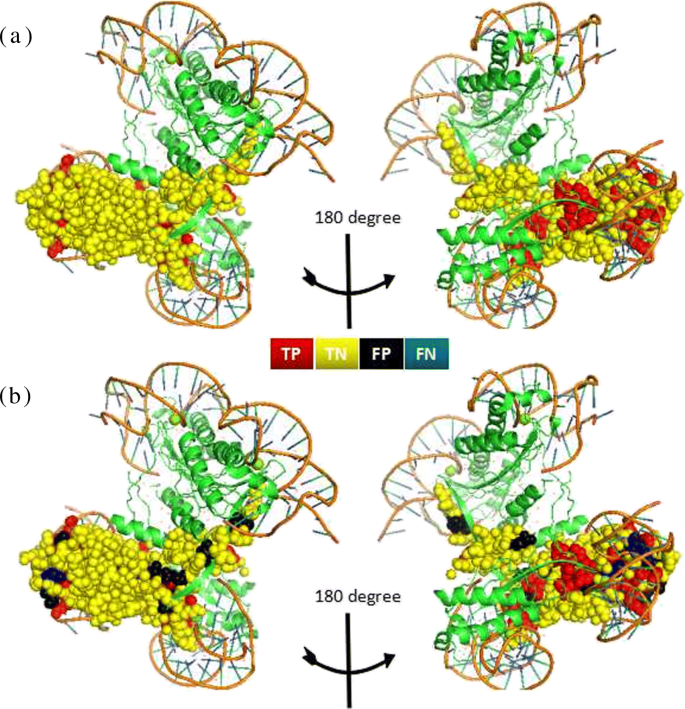 PDRLGB: precise DNA-binding residue prediction using a light