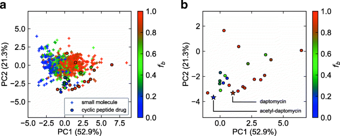Computational prediction of plasma protein binding of cyclic