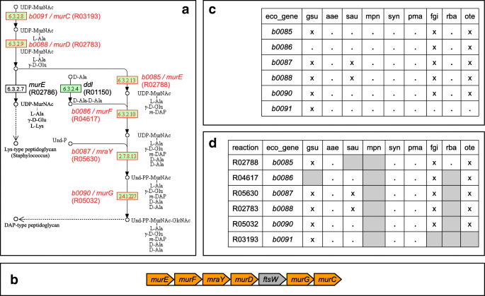 CoMetGeNe: mining conserved neighborhood patterns in metabolic and