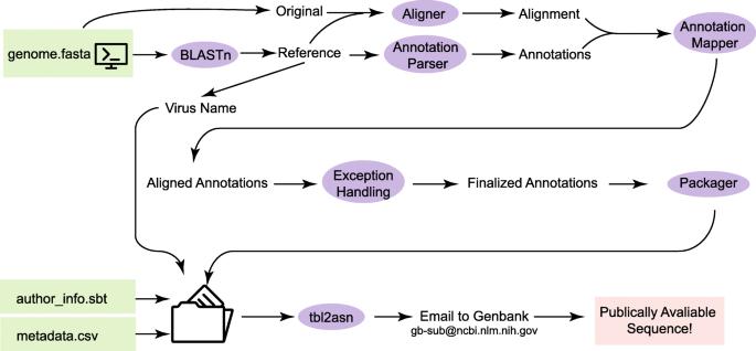 VAPiD: a lightweight cross-platform viral annotation