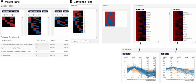 Functional Heatmap: an automated and interactive pattern