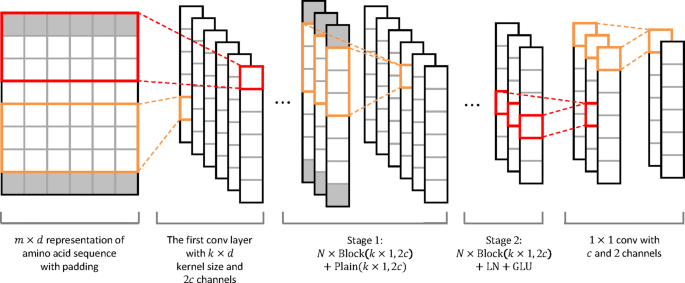 Predicting protein-ligand binding residues with deep convolutional