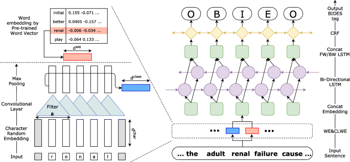 CollaboNet: collaboration of deep neural networks for biomedical