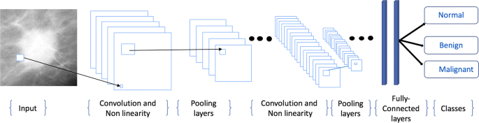 Deep convolutional neural networks for mammography: advances