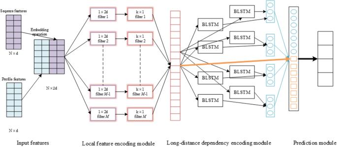 DeepACLSTM: deep asymmetric convolutional long short-term memory