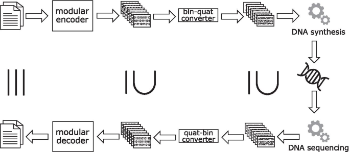 图9.GydF4y2Ba