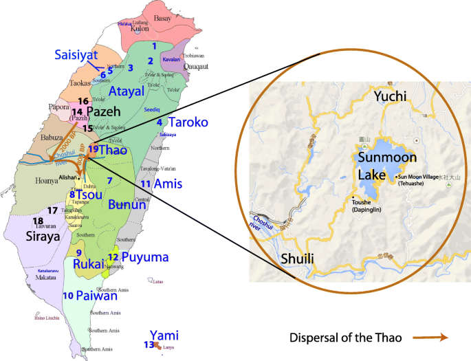 Genetic diversity of the Thao people of Taiwan using Y
