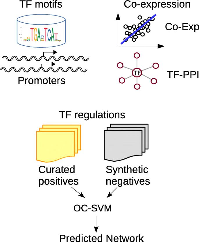 Landscape of transcriptional deregulation in lung cancer