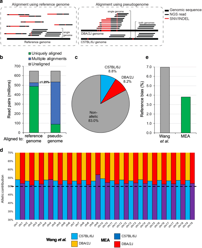 Development and application of an integrated allele-specific