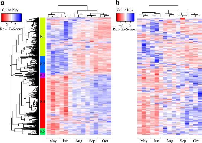 Genome-wide discovery of lincRNAs with spatiotemporal