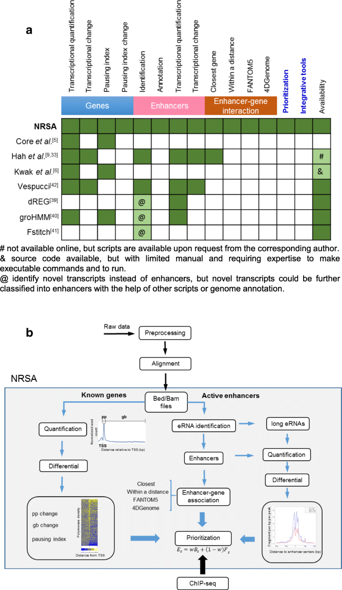 Nascent RNA sequencing analysis provides insights into