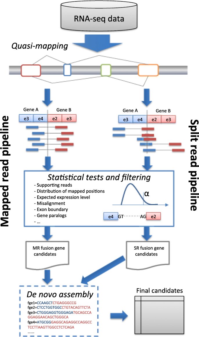 A fast detection of fusion genes from paired-end RNA-seq