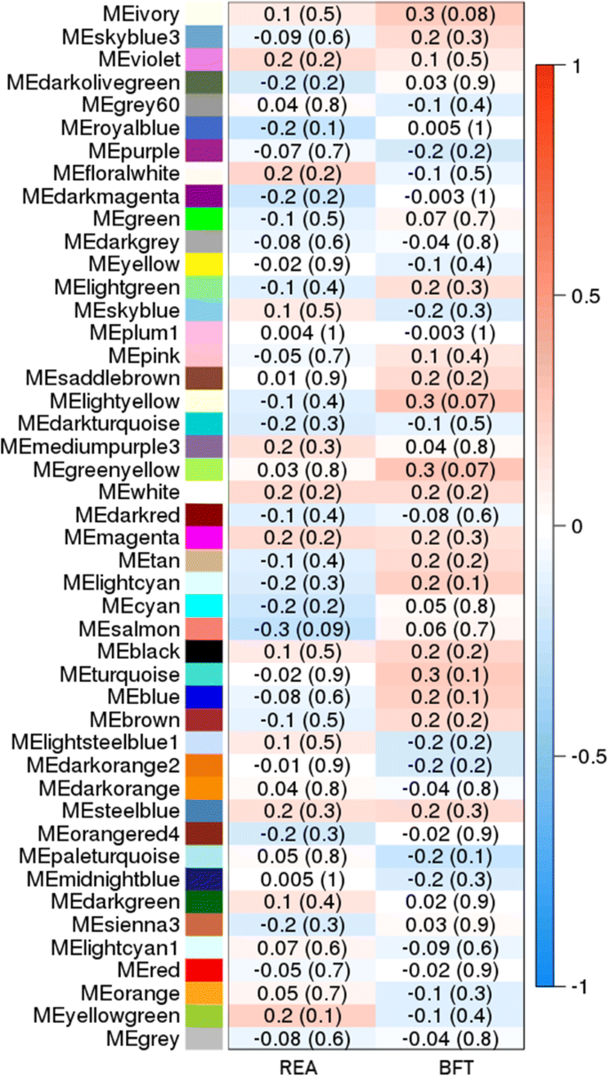 Gene co-expression networks associated with carcass traits