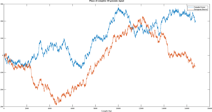 ML-DSP: Machine Learning with Digital Signal Processing for