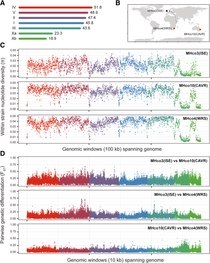 Population genomic and evolutionary modelling analyses reveal a