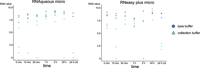 Purification of high-quality RNA from a small number of