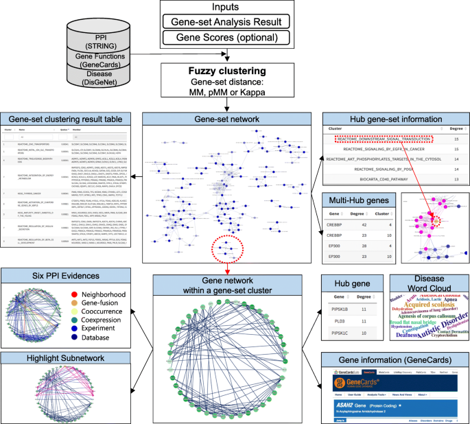 GScluster: network-weighted gene-set clustering analysis