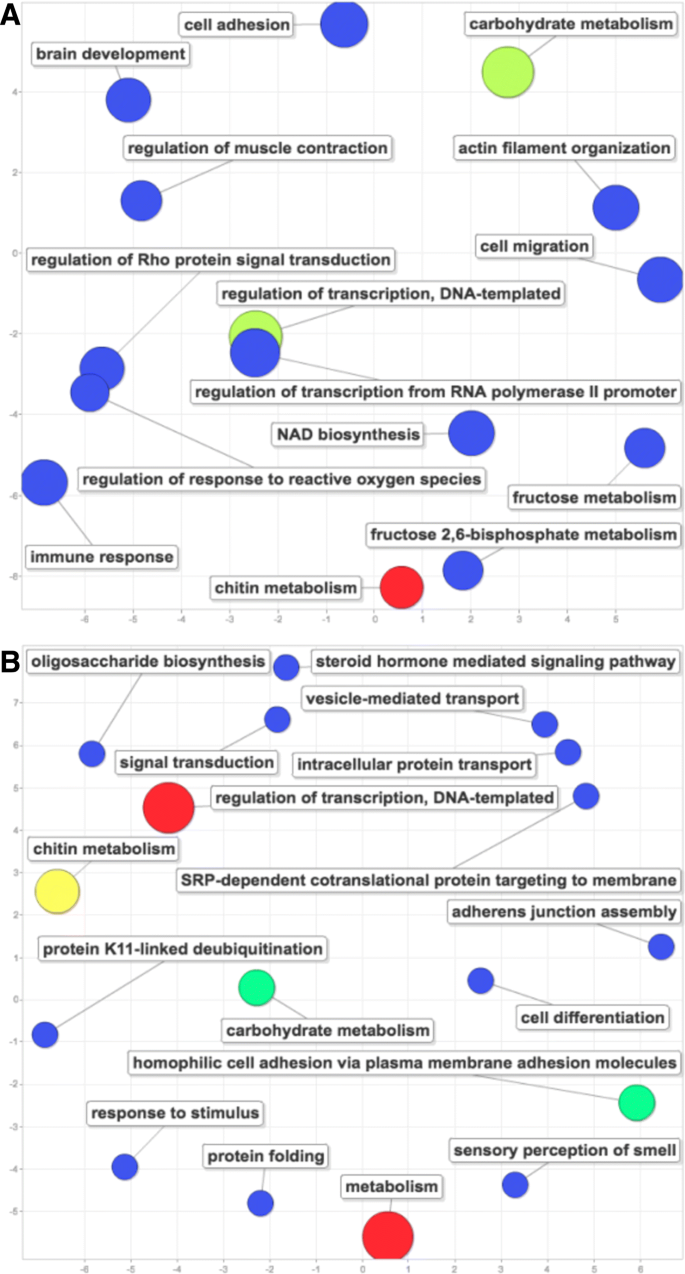 Transcriptomic responses to diet quality and viral infection in Apis