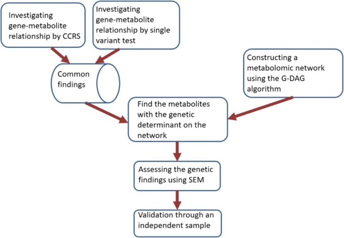 Genome analysis and pleiotropy assessment using causal