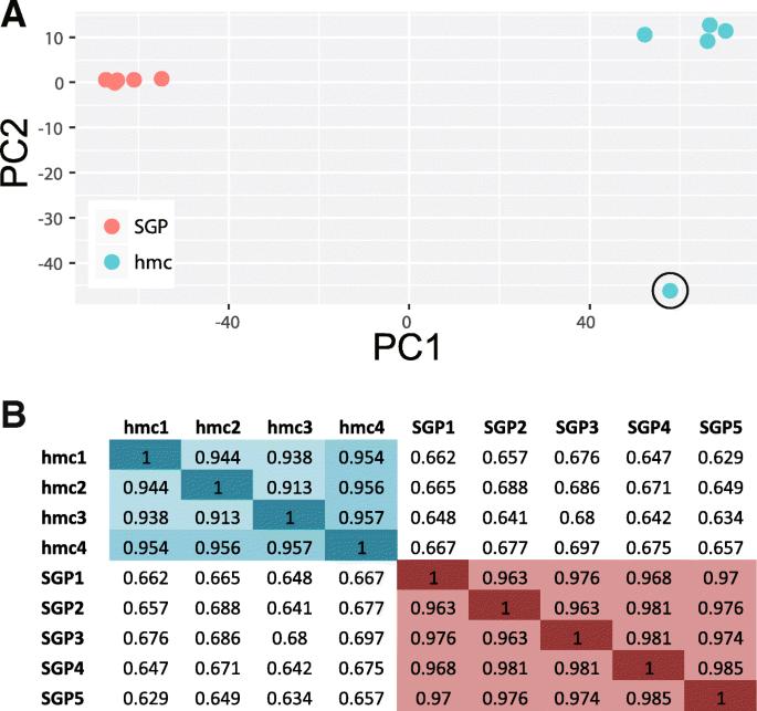 mRNA profiling reveals significant transcriptional