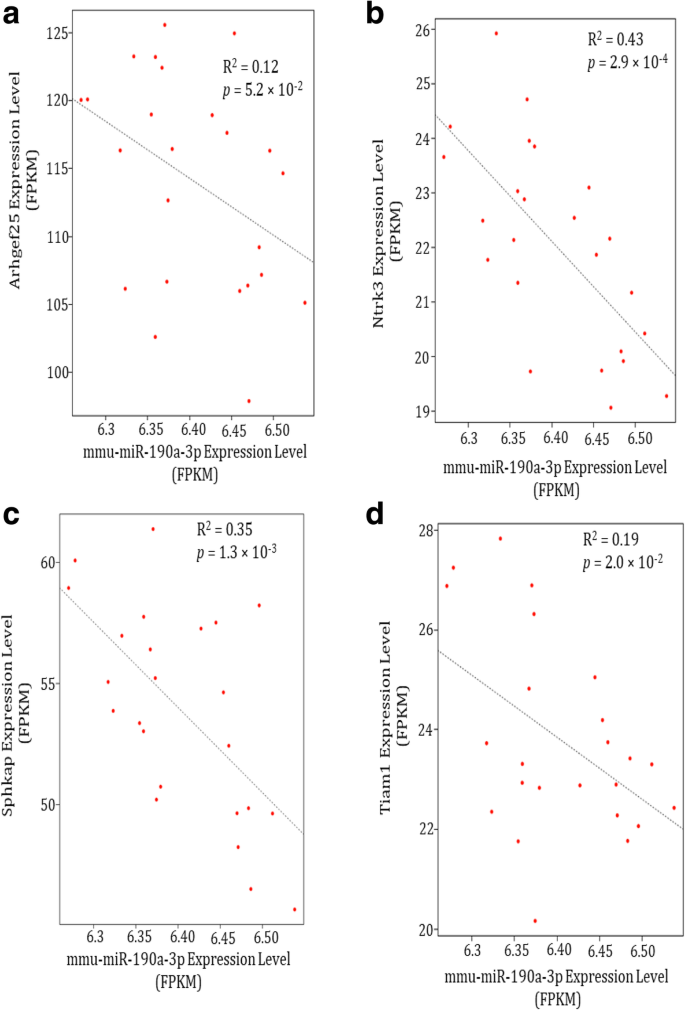 MiR-190a potentially ameliorates postoperative cognitive