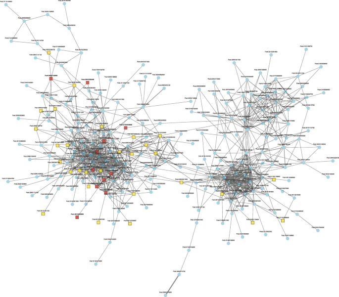 RNA-seq of eight different poplar clones reveals conserved